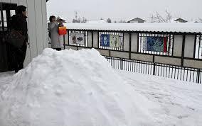 The Biggest Blizzard A Visit To Shinji Suzuki U0027s Bonsai Garden U2013 Valavanis Bonsai Blog