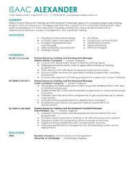 Hr Assistant Resume Samples by Download Hr Resume Examples Haadyaooverbayresort Com