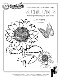 Alaska State Flag Coloring Page Coloring Page Sunflower Drawing Coloring Pages For Kids Sunflower