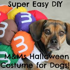 link costumes for halloween diy pet costumes archives beagles and bargains