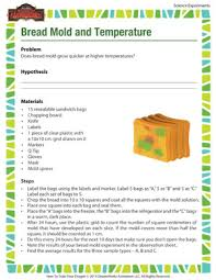 bread mold and temperature u2013 science experiments for kids u2013