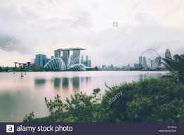 marina bay sands gardens by the bay with cloud forest flower