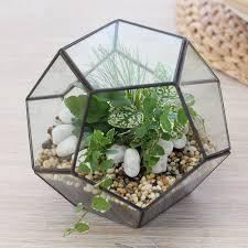 shop decorative pebbles for terrariums indoor planters harvest