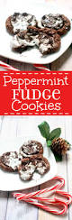 peppermint fudge cookies the gracious wife