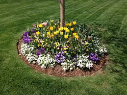 spring landscaping flower beds seasonal installation and maintenance turfworks