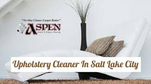 the professional upholstery cleaners at aspen roto clean serve