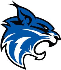 wildcat mascot clipart free download clip art free clip art