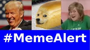 Hi My Name Is Meme - apologize post pure bread pets hi my name s catrina