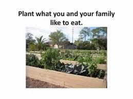 plant selection u0026 layout your florida vegetable garden youtube