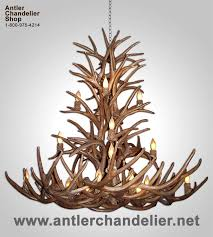 How To Make Deer Antler Chandelier 21 Best Antler Chandeliers Images On Pinterest Chandeliers Deer