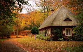 small cottage in the middle of the nature