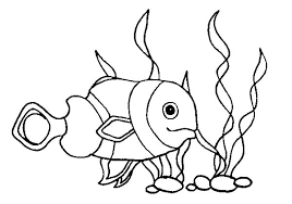 baby clown fish coloring pages place color