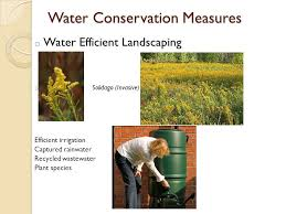 water conservation measures in green building by sijia cao ppt