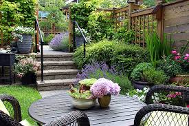 free ornamental garden images and stock photos freeimages