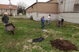 the endless orchard planting day in louisville kentucky fallen