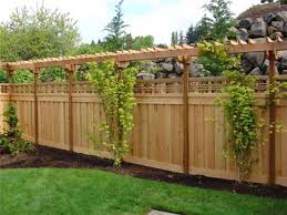 backyard fence ideas cheap while not the most appealing fence