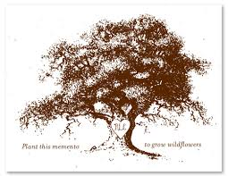 tree memorial cards on seeded paper family tree by