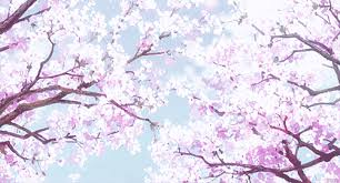 cherry blossom tree gif daway dabrowa co