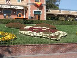photo report september 30th 2011 mickey u0027s halloween party
