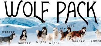 5 wolf pack read my