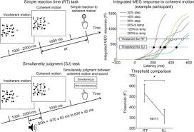 neural correlates of the time marker for the perception of event