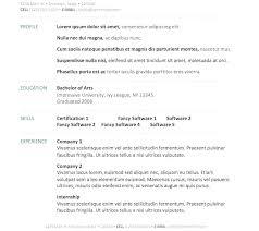 curriculum vitae format template download vita resume template simple word download best curriculum vitae