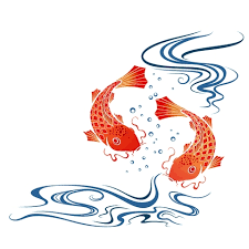 koi fish i m so about this back cover up