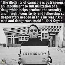 Legalize Weed Meme - carl sagan do i look high legalize marijuana quote weed memes
