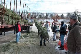 troop 12 christmas tree lot batavia il 60510 batavia