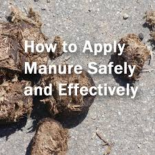 5 tips for using manures in the garden home grown fun