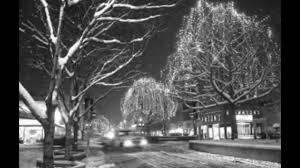 robert grant photos of grand junction area christmas decorations