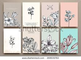 vintage floral cards set frame engraving stock vector 269035763