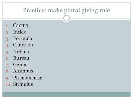 bureau plural singular nouns plural spelling ppt