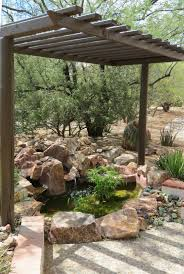 desert tortoise u2013 todd u0027s backyard