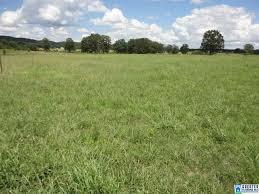 Zillow Com Birmingham Al St Clair County Etowah County Al Real Estate Listings Homes
