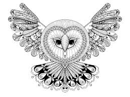 owl with big head animals coloring pages for adults justcolor