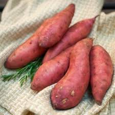 Freezing Root Vegetables - freezing sweet potatoes thriftyfun