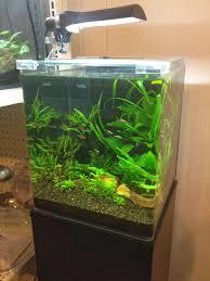Nano Aquascaping Aquarium On Pinterest Aquascaping Reef And Home Loversiq
