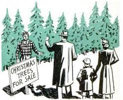 how to pick and buy your own christmas tree the art of manliness