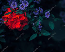 Beautiful Fairies by Beautiful Fairy Dreamy Magic Red Ruby And Purple Flowers With Dark