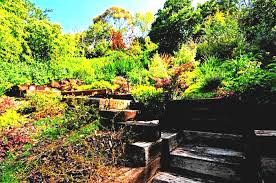 ideas for a small garden amazing of nice gardens uk suitable