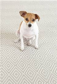 Dash And Albert Outdoor Rugs 78 Best Rugs Images On Pinterest Area Rugs Architecture And At Home
