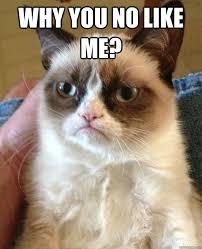 Why You No Like Meme - why you no like me misc quickmeme