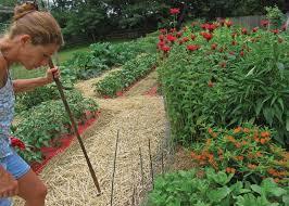 vegetable gardening in new jersey