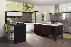 Merillat Kitchen Cabinets Reviews by Merillat Classic Tolani In Maple Chiffon Merillat