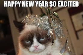 New Grumpy Cat Meme - grumpy cat new years memes imgflip