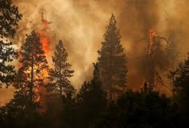 Wildfire Near Reno by Rim Fires Chars 200 Square Miles Creates Own Weather Pattern