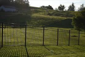 for dogs u and foster makes five best dog friendly yard fences