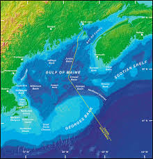 New England On The Map by Why Are Cod Struggling To Recover In New England Climate Change