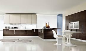 modern kitchen interiors retro luxury feng shui kitchen interior decobizz com